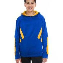 222633 Youth Holloway Argon Hoodie Thumbnail